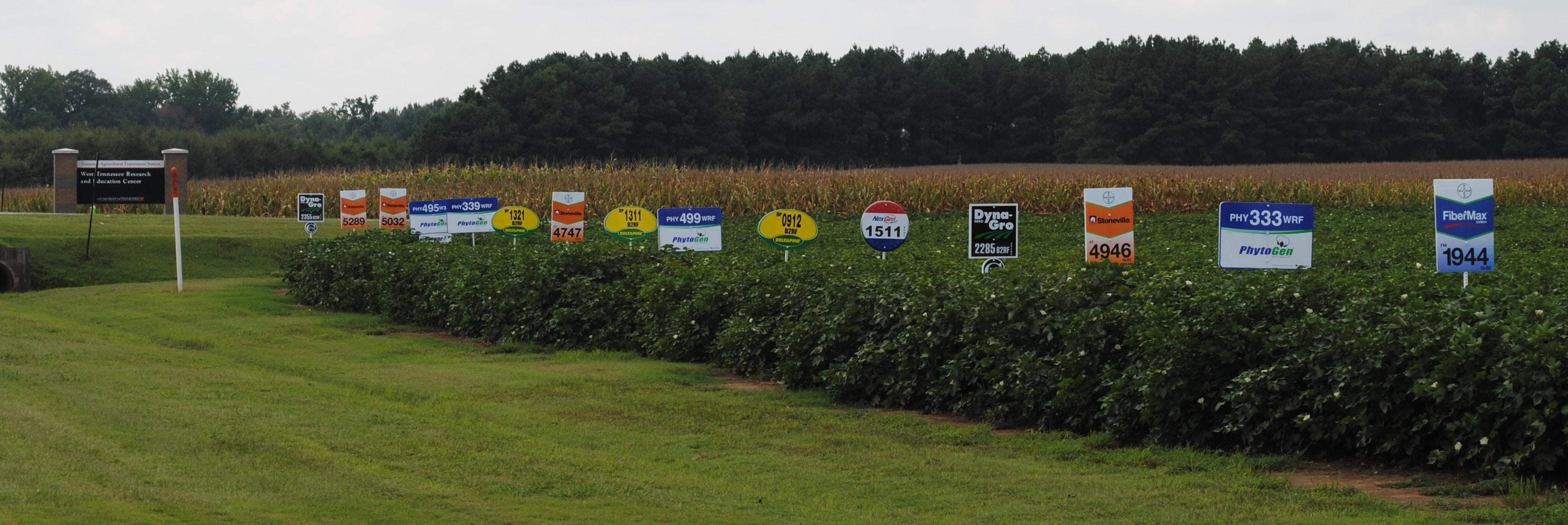 Madison County Standard Test Demonstration Ut Crops News