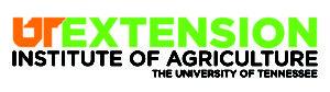 New UT EXTENSION logo